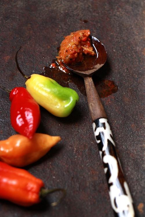 Pâte_de-piments-vegetariens_devorezmoi_05